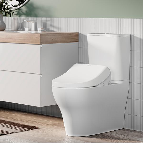 Pristine e Bidet Bathroom01