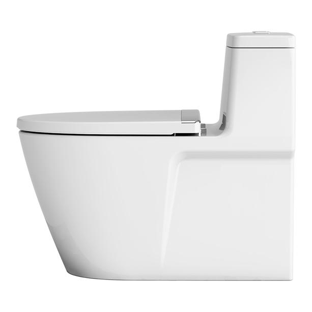 Acacia Evolution One piece Toilet image2
