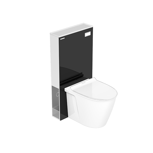 CITY Back To Wall Toilet with Conceal Tank
