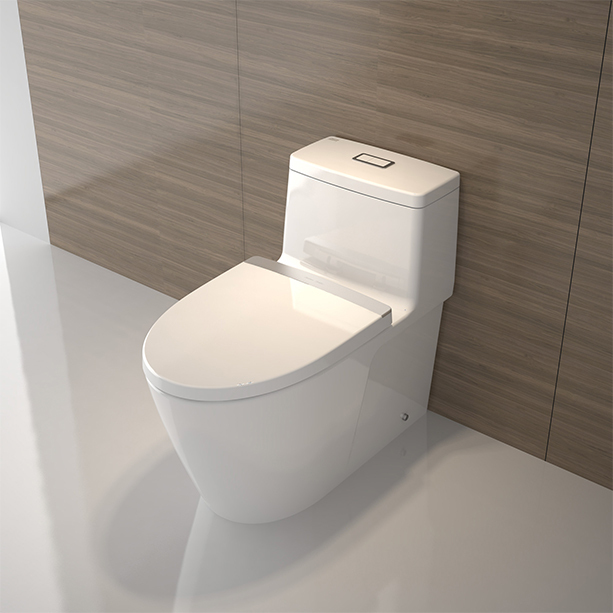 Acacia-Evolution-One-piece-Toilet-image3.jpg