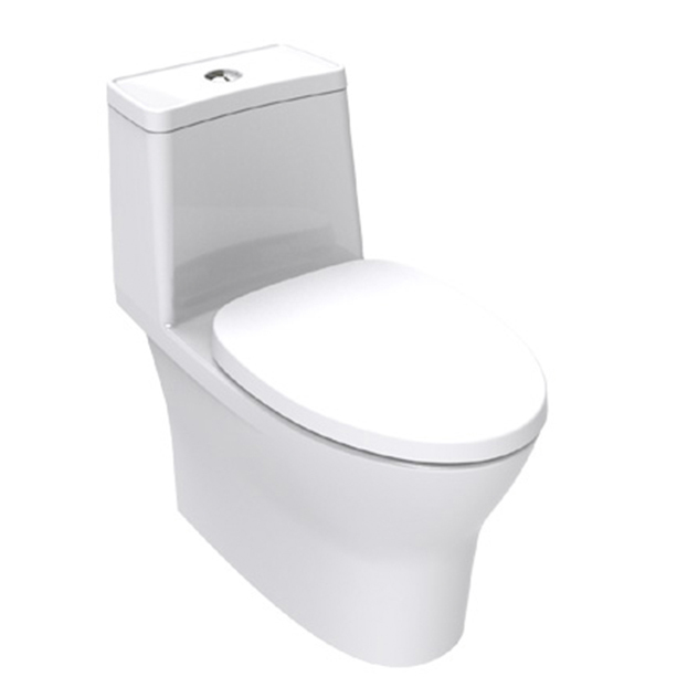 Flexio One piece Toilet image