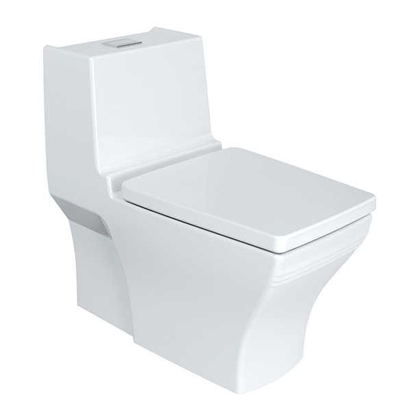 Nobile One-Piece Toilet 305mm + Nobile Slow Closing Seat Cover