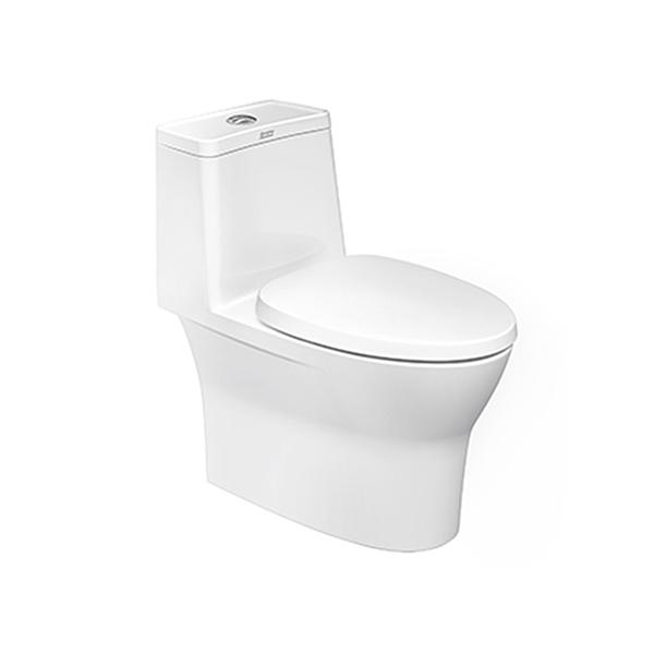 Flexio One Piece Toilet