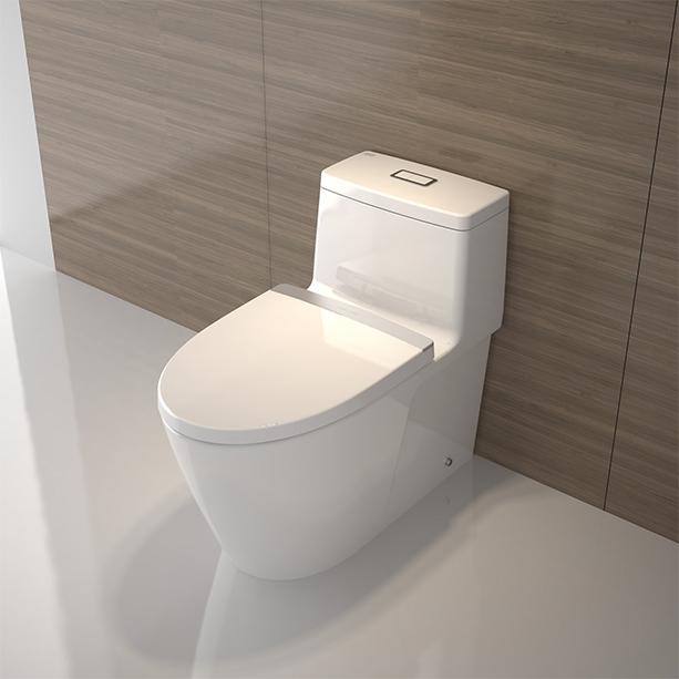 Acacia Evolution One piece Toilet image3