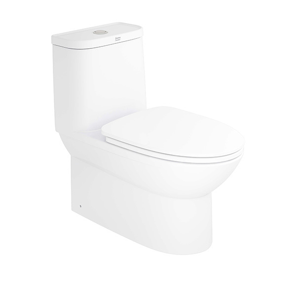 Neo Modern One-piece Toilet