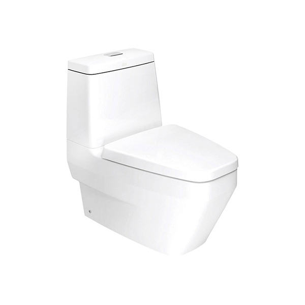 IDS Clear Close Coupled Toilet 3/4.5 Lpf