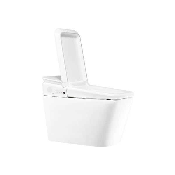 PLAT Shower Toilet 1