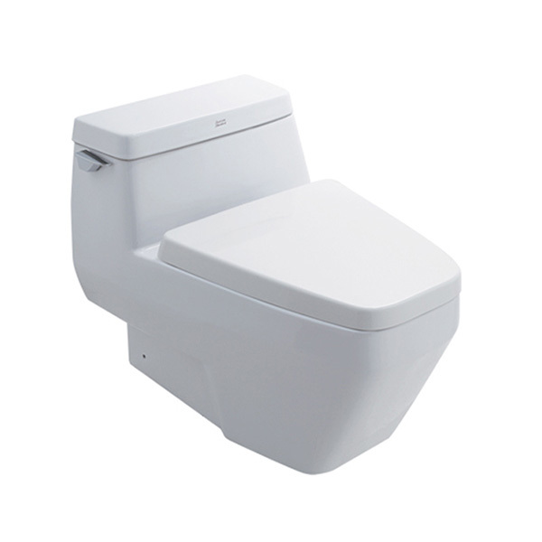 IDS Clear 6L One-Piece Toilet with Soft Close Seat