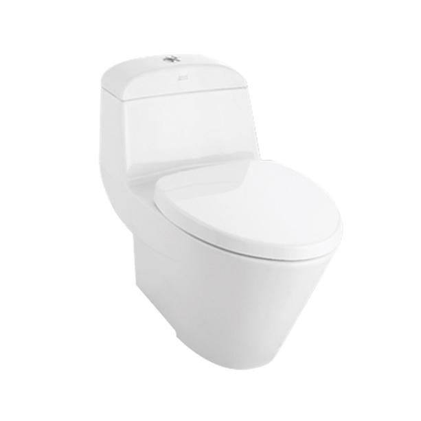 Active One-Piece Toilet