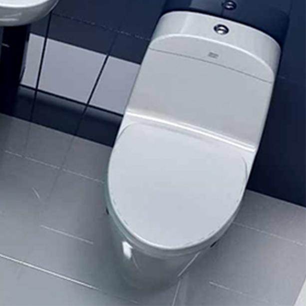 Active One Piece Toilet image2