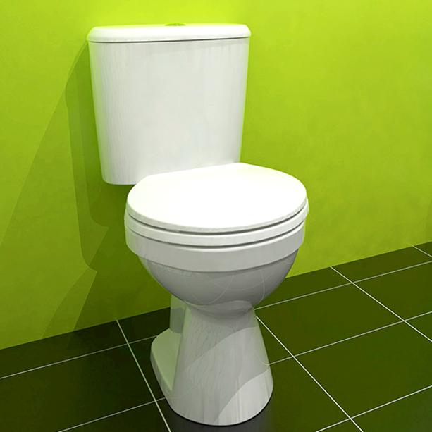 Winston Plus Close Coupled Toilet image2